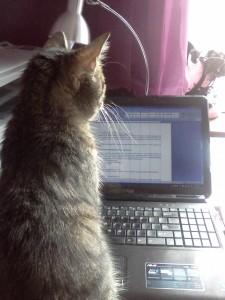 Co pomaga, a co przeszkadza w pracy tłumacza pisemnego?